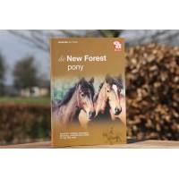 de New Forest pony -  - 7.55